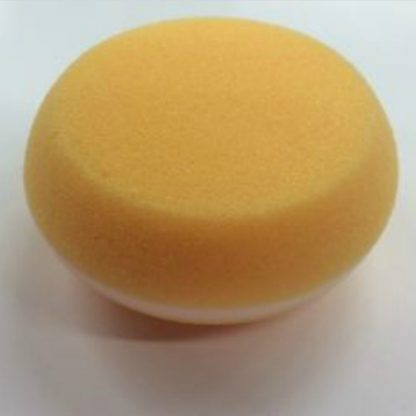 Smooth Sponge - Website Cover Photo