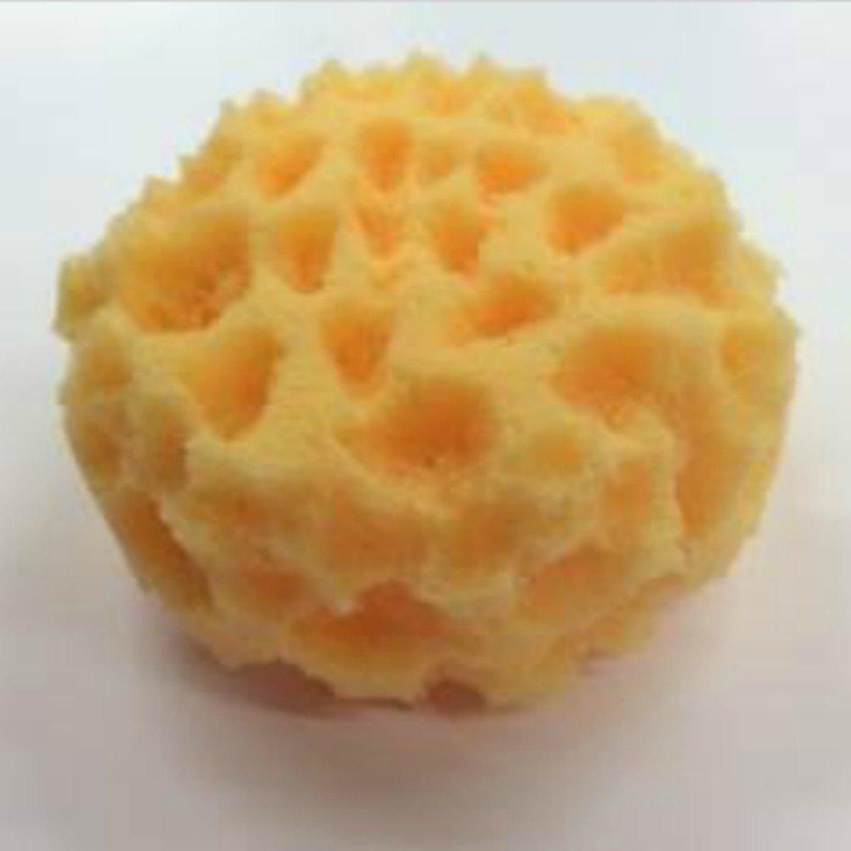 Textured Sponge - Website Cover Photo