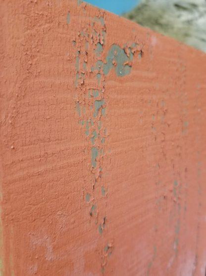 Moo Paint Sample 2